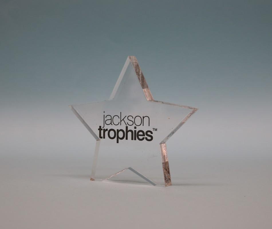 Freestanding Acrylic Star Award 90mm