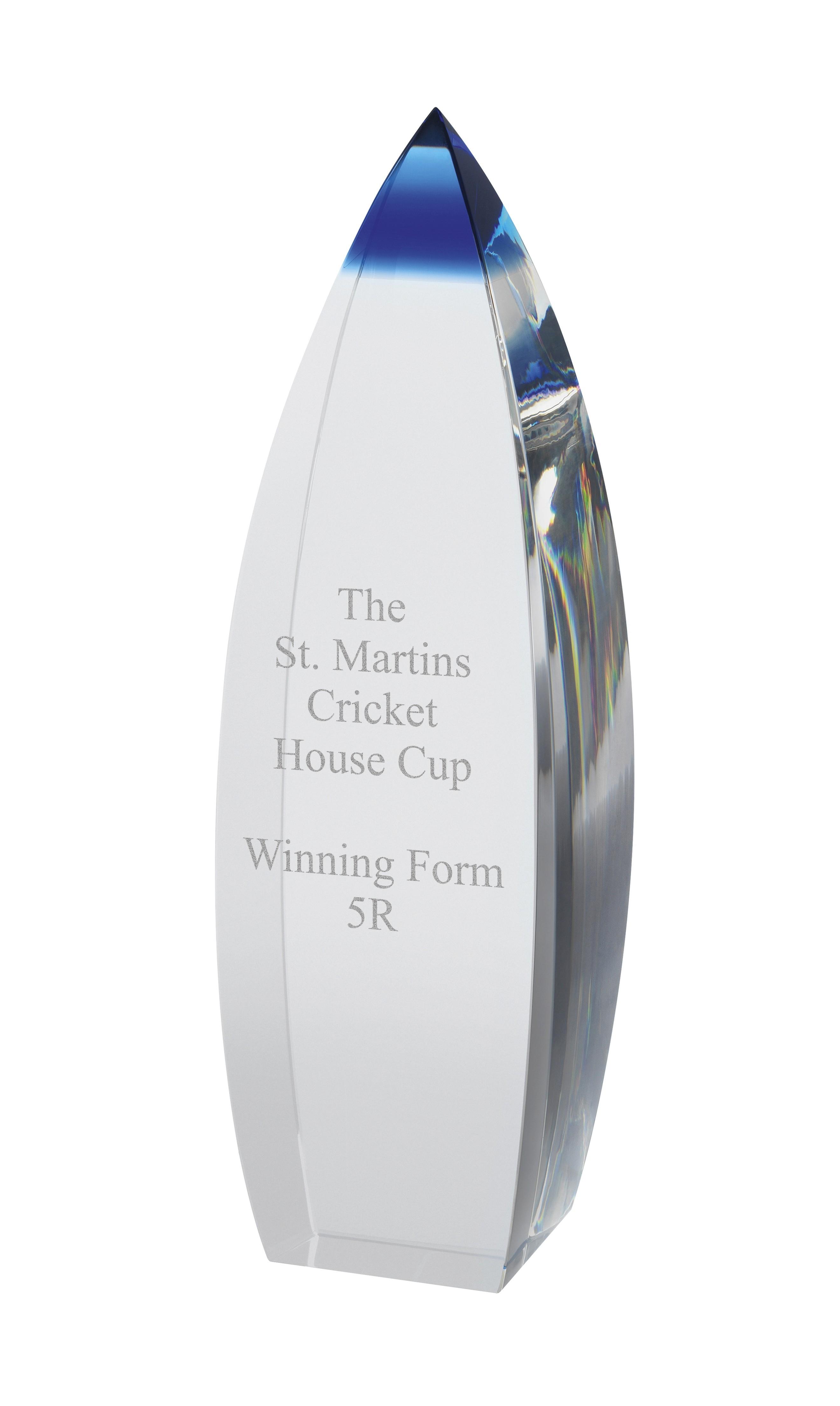 17.5cm Blue & Clear Crystal Award