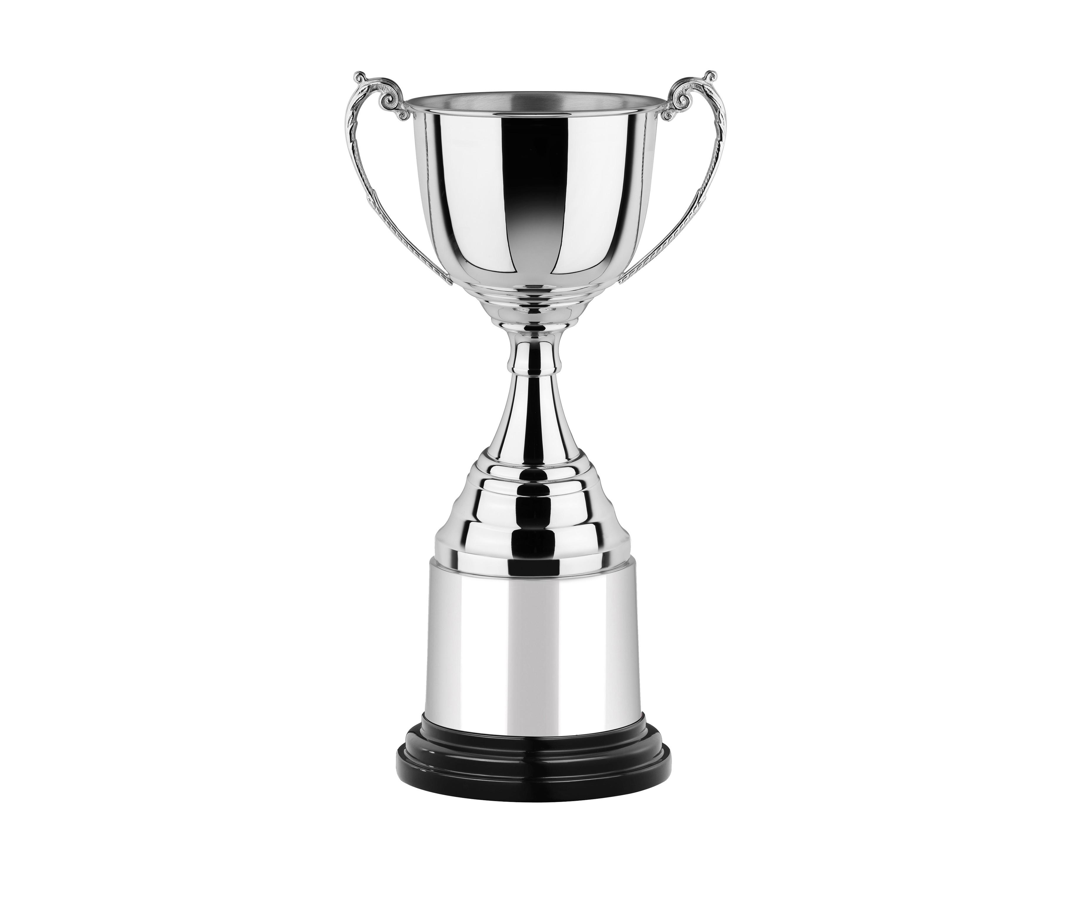 Non Tarnish Cup