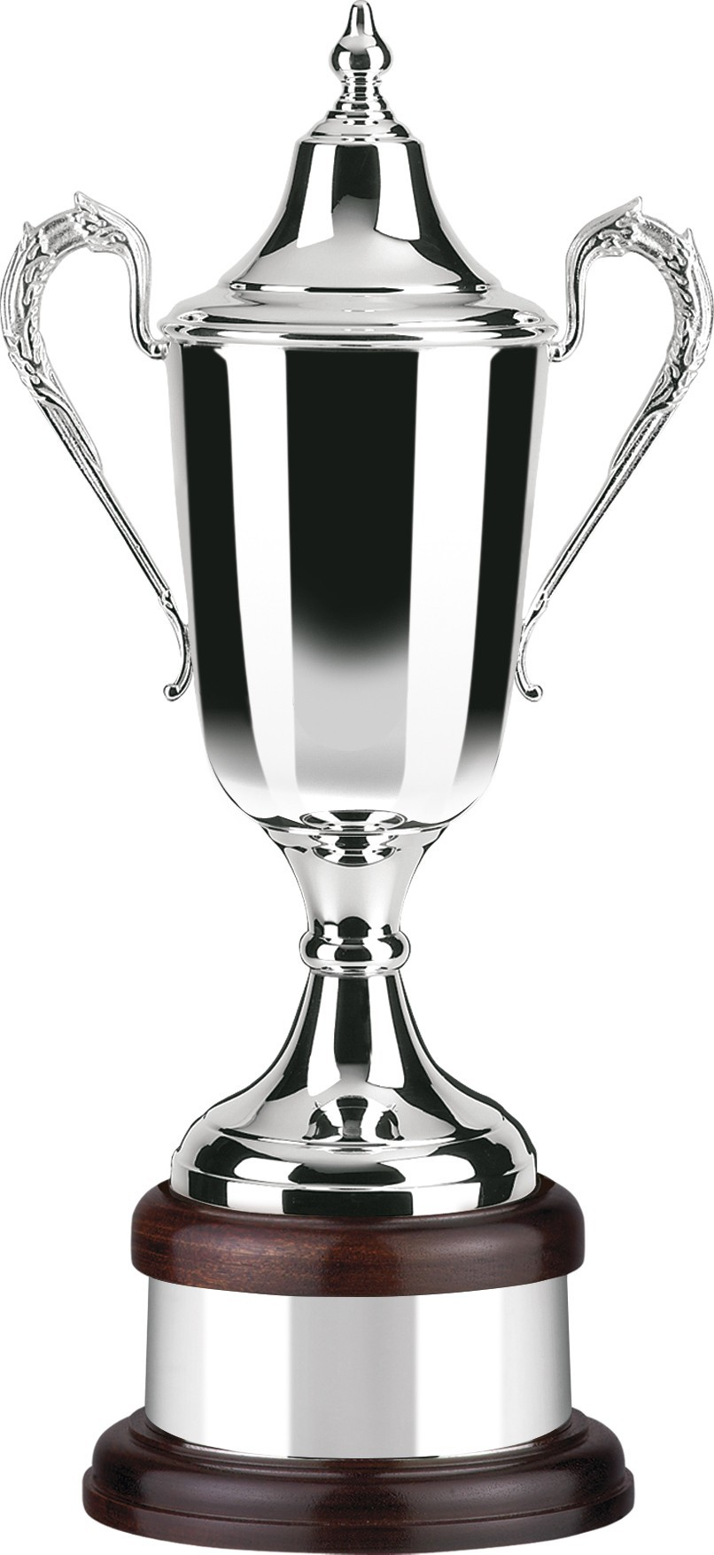 38cm Plain Bodied Silver Plated Supreme Award
