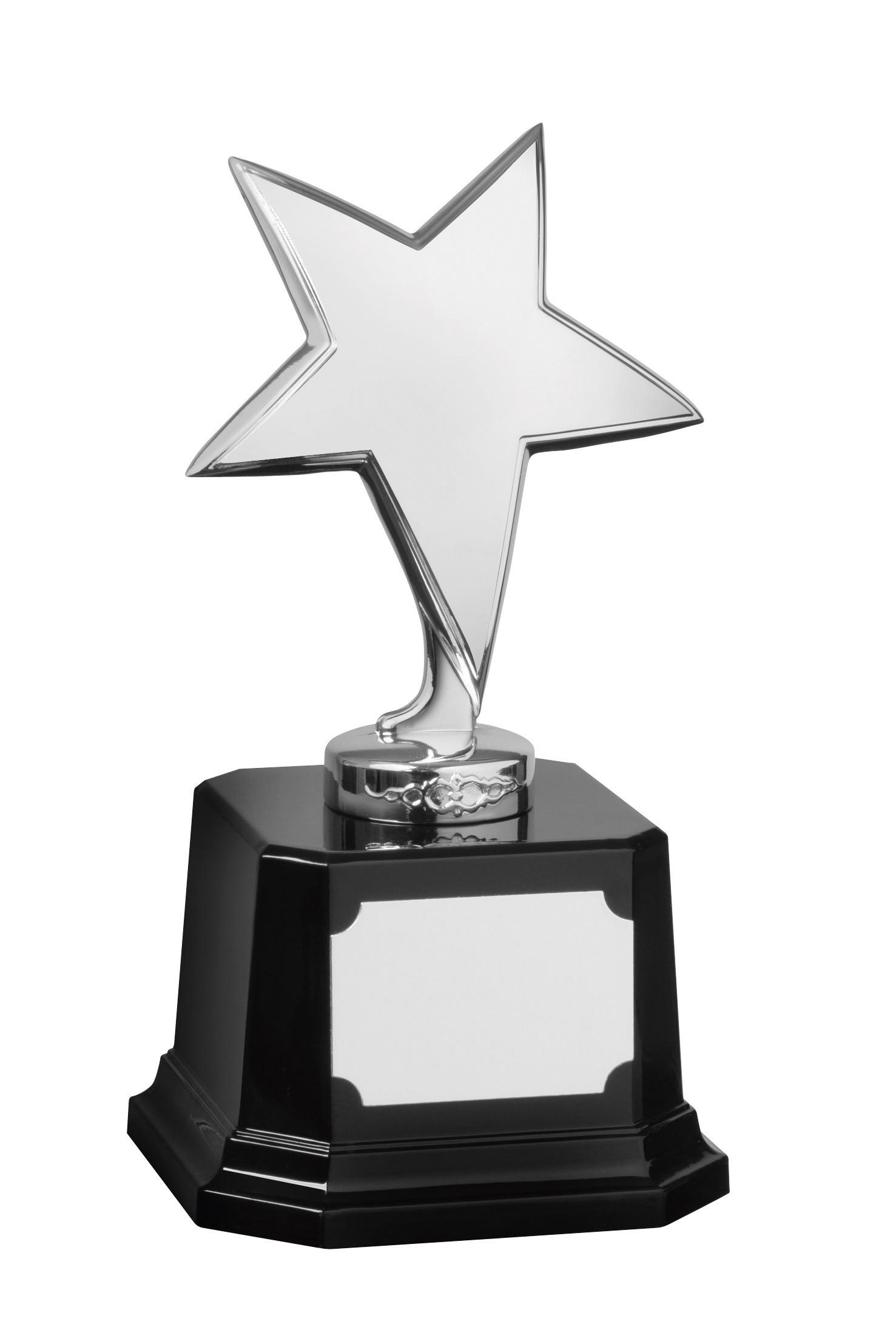 17.5cm Silver Finish Star Award