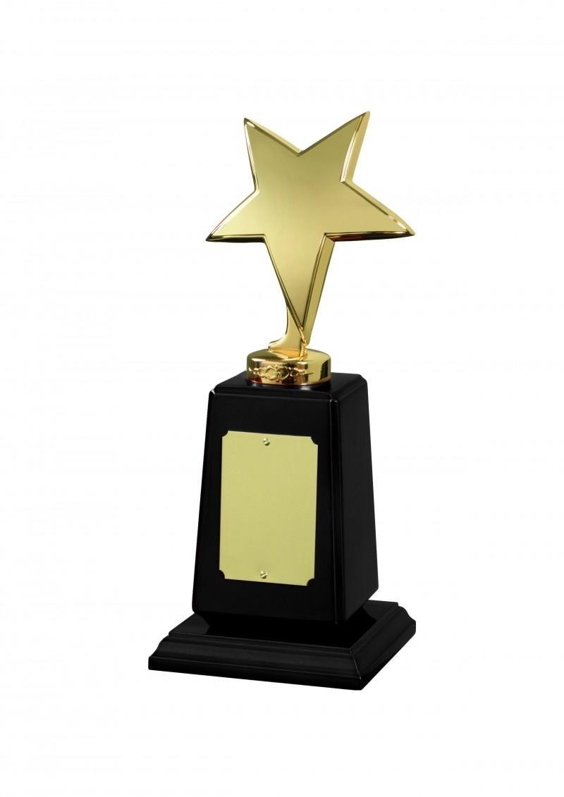 Ant Gold FinishStar Award