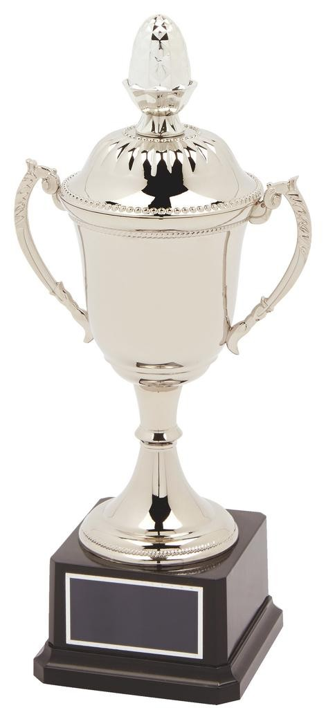 29cm Nickel Plated Trophy Cup With Lid
