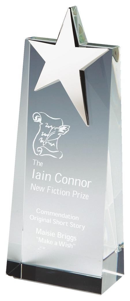 18.5cm Crystal Wedge Award With Silver Star