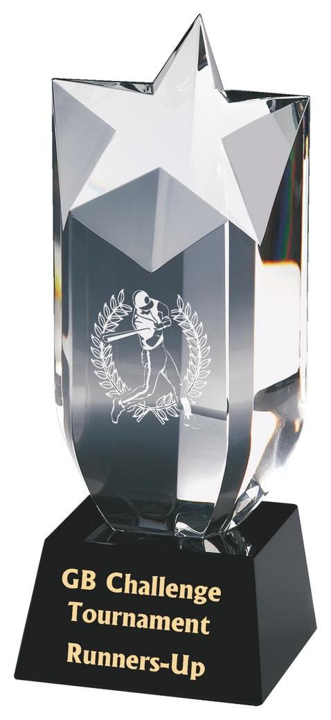 Crystal Star Column Award