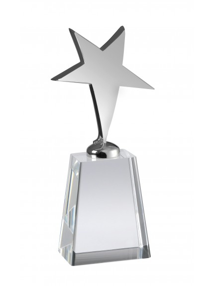 Metal Star Award with Crystal Base in Box