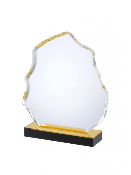 LG Acrylic Award - 3 Sizes