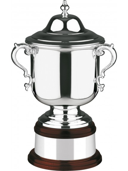 Silver Plated Plain League Champions Cup