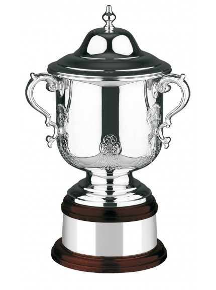 Silver Plated Hand Chased League Champions Cup