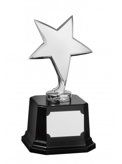 Star Award - Available in Gold and Silver