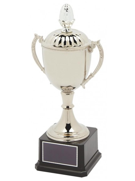 Nickel Plated Trophy Cup With Lid